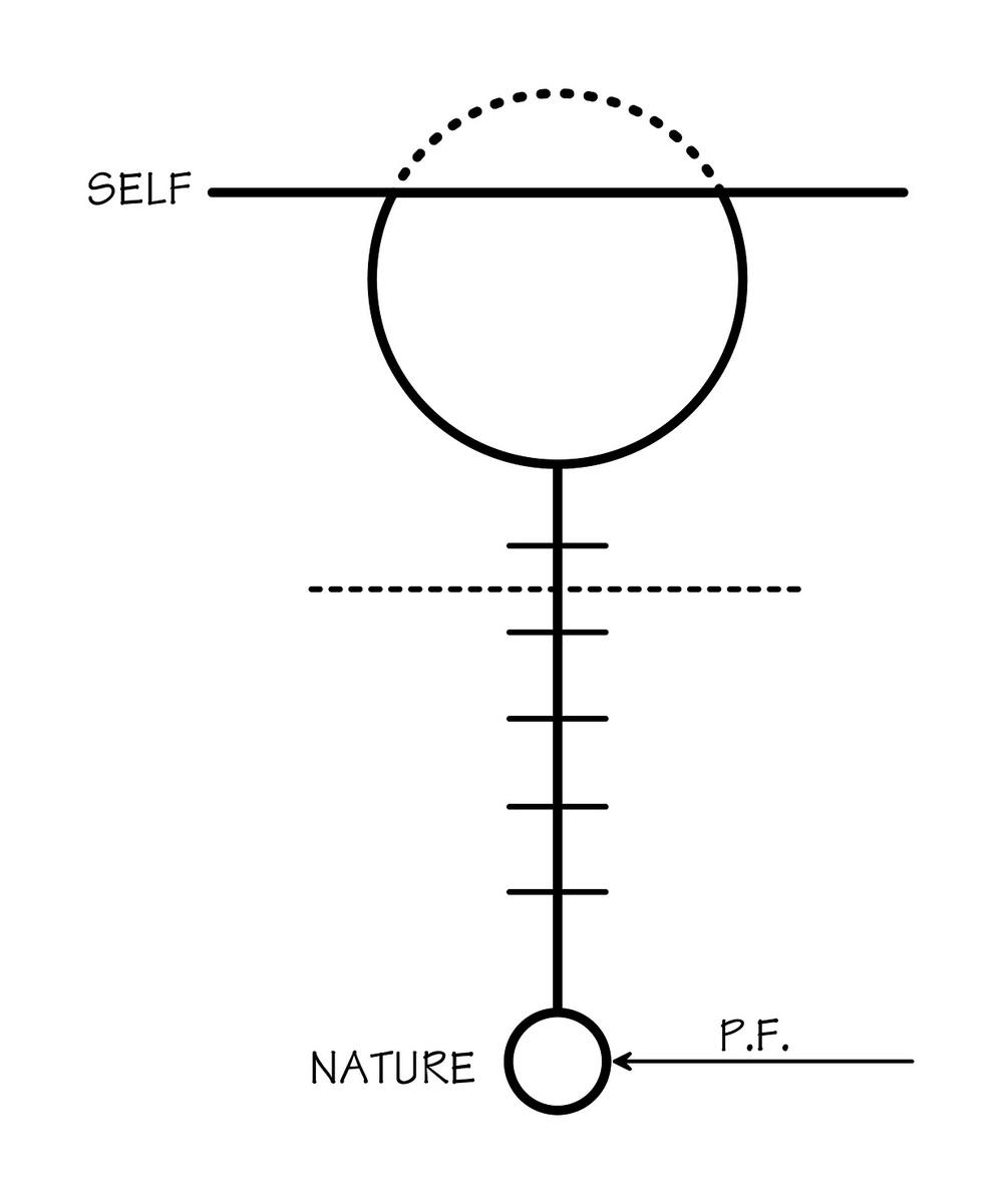 Diagram # 28 illustration