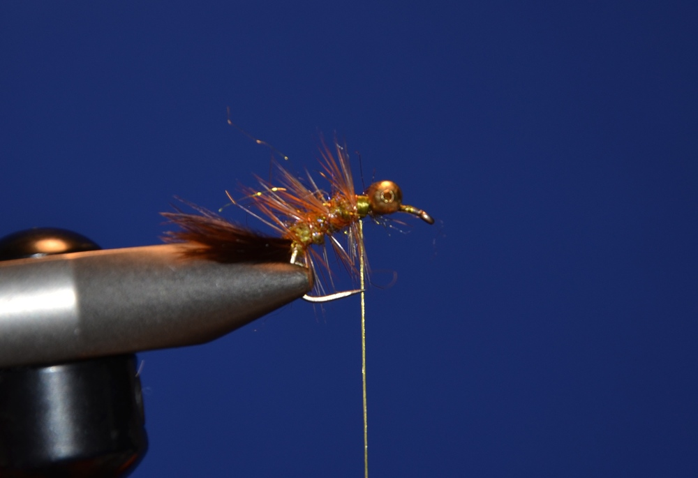 Tie in hackle and wrap back, catch the hackle with the wire and wrap wire forward.