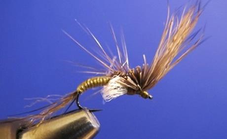 spring_creek_flies.jpg