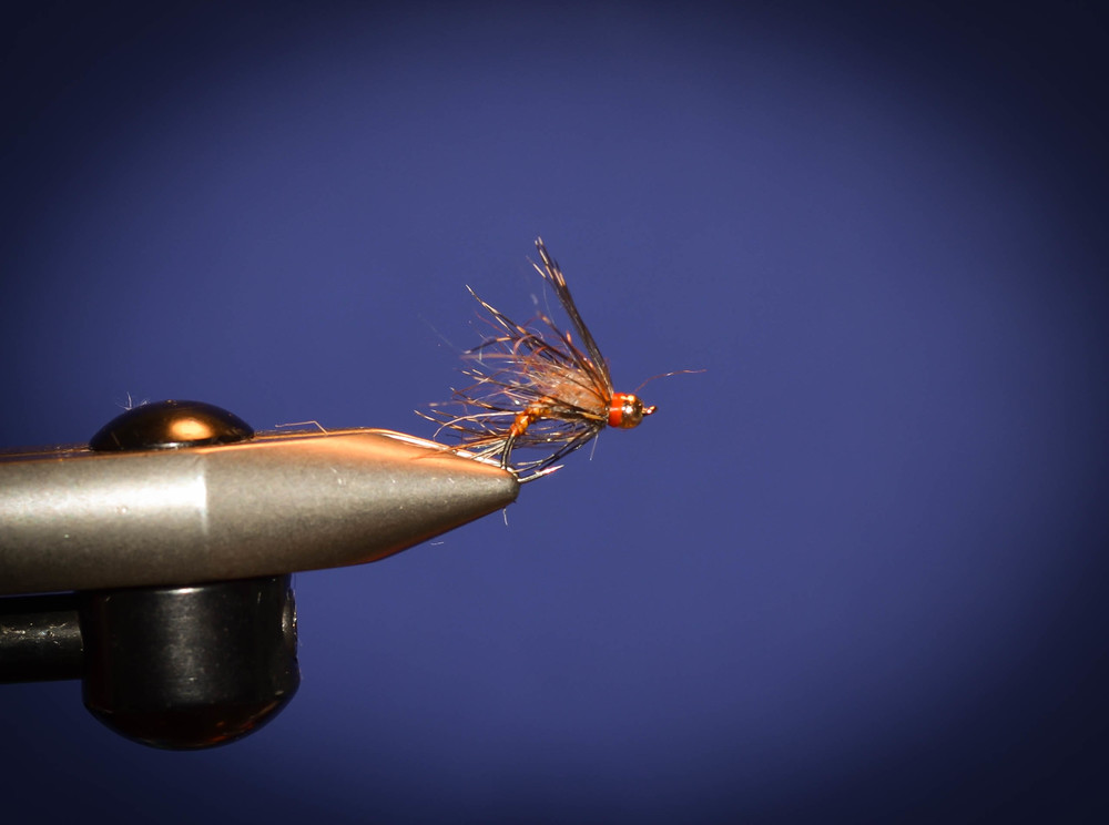 Tie in soft hackle and give it a wrap or two. Whip finish and glue.