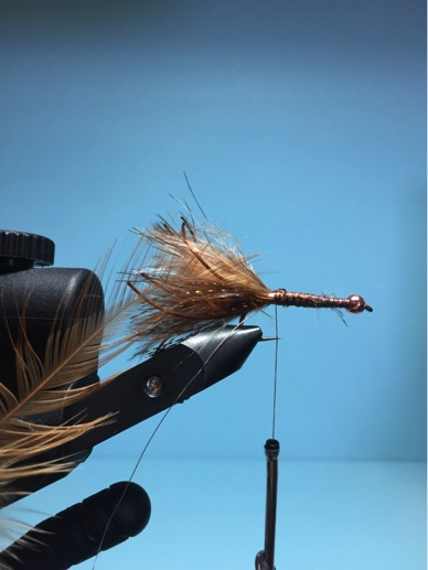 Tie in the gold wire and a saddle hackle feather by the tip.