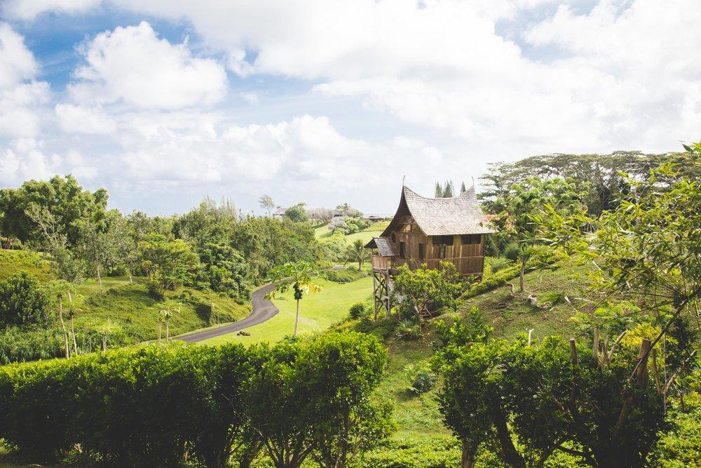 Kauai-7747.jpg