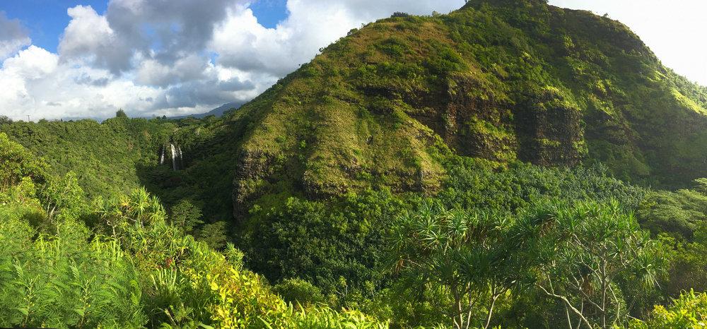 Kauai-7611.jpg