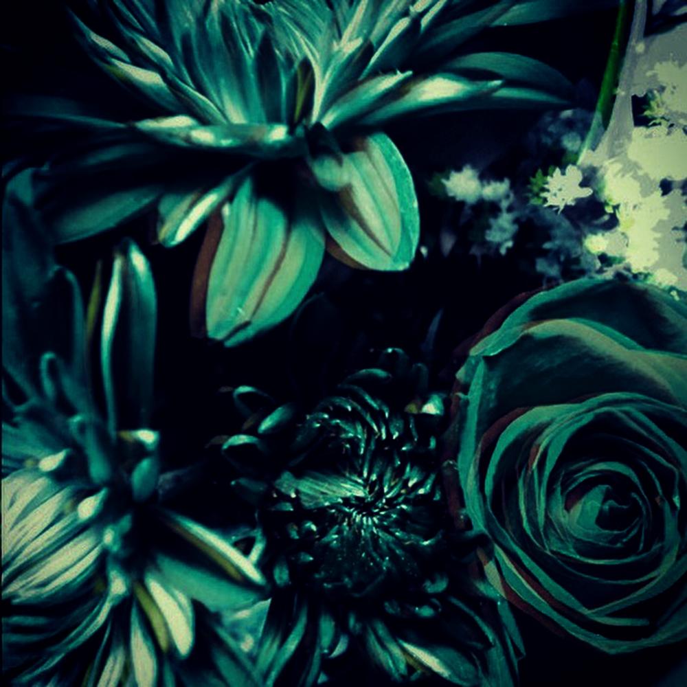 confetti_X_floralonly.jpg