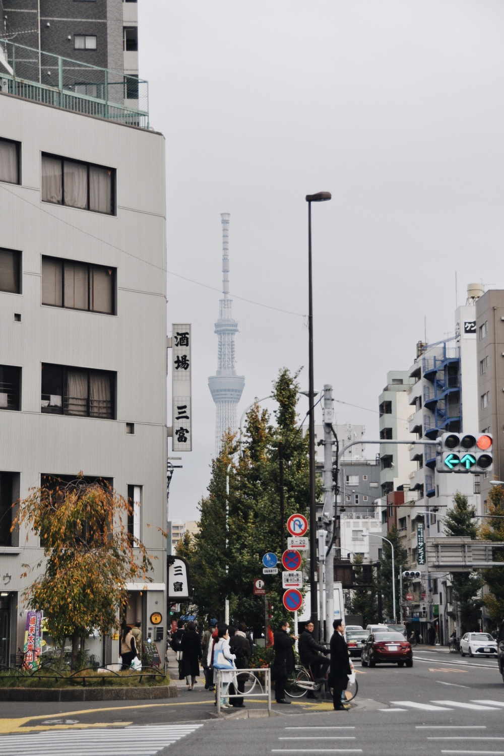 Iriya District with a view of the Tokyo Skytree in the distance.