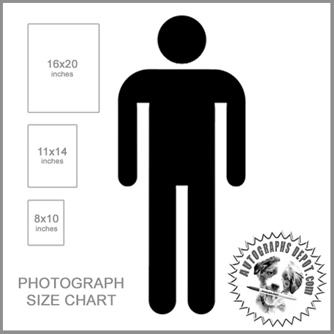 Autographs Depot Size Chart.jpg