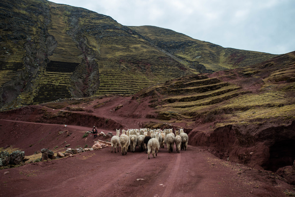 Palccoyo, Cusco, Peru