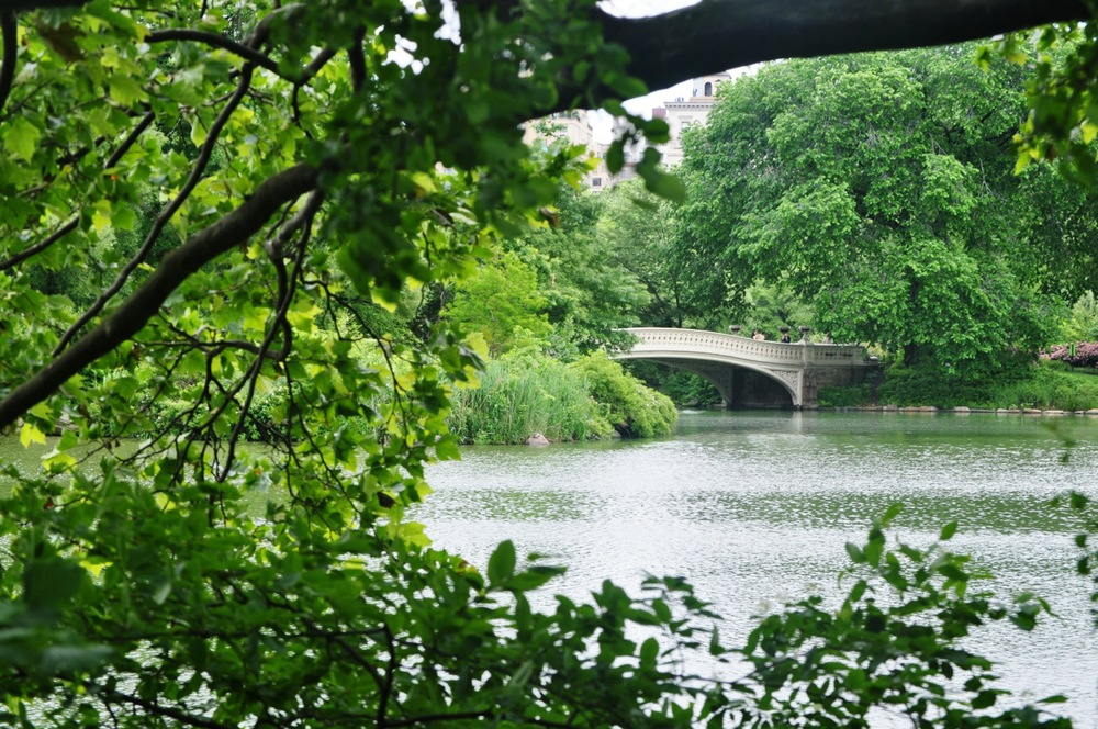 Bow Bridge. Central Park. New York City. United States.