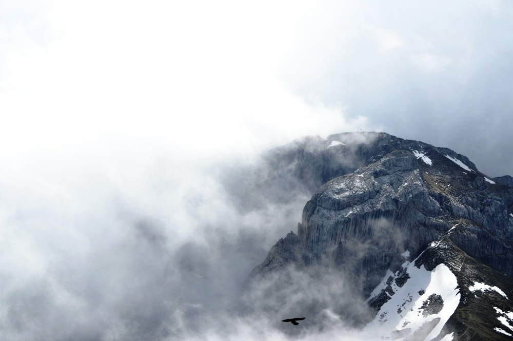 Soar. Pilatus. Switzerland.