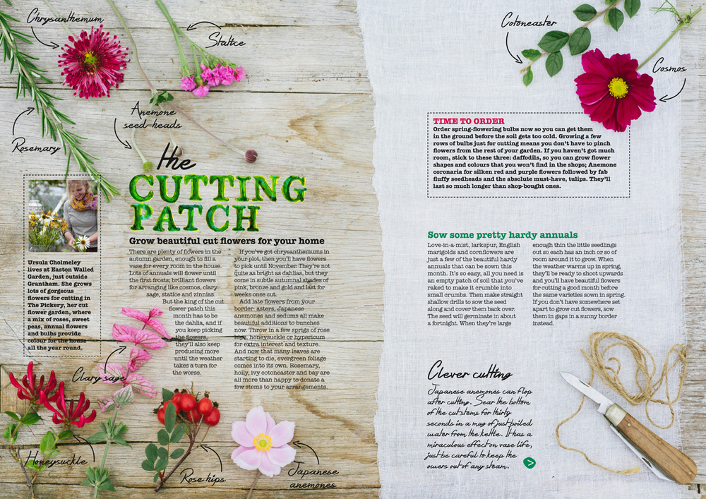 Crafty Gardener magazine // Bauer Media