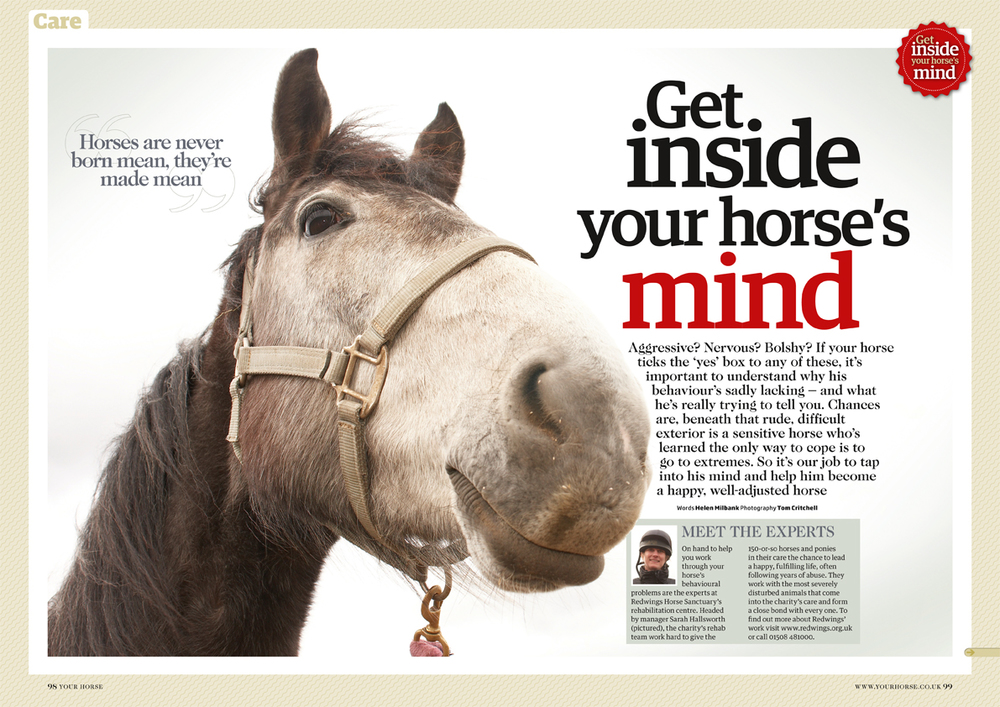 Your Horse magazine // Bauer Media