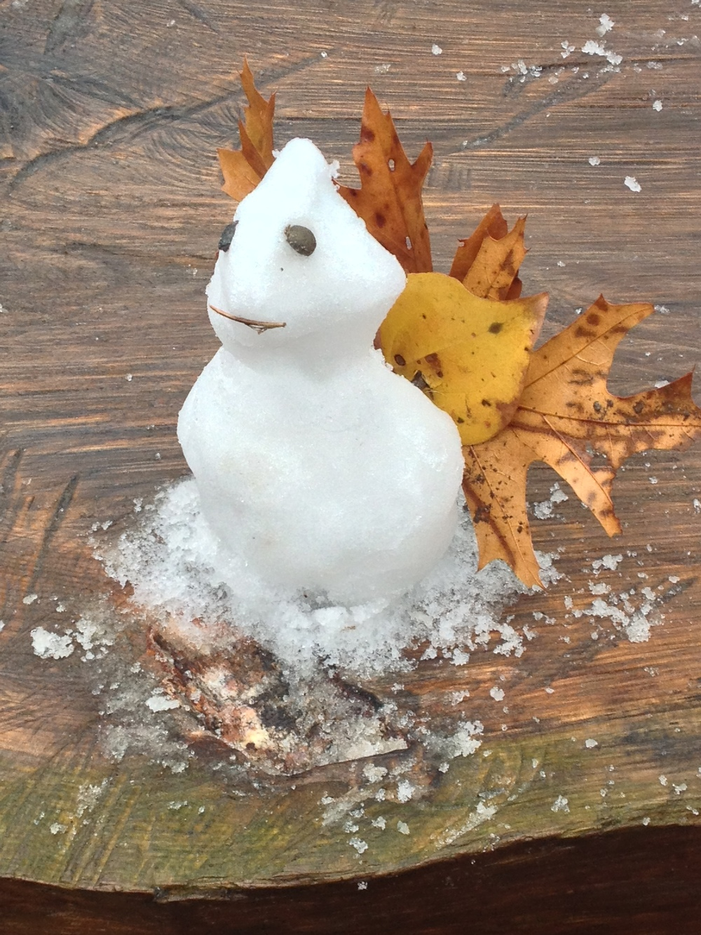 I MADE MY WIFE A TURKEY SNOWMAN. SHE THOUGHT IT WAS CUTE.