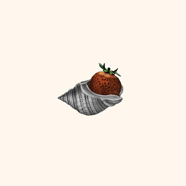 Come out of your shell ☺️ a little Monday inspiration. ⠀ .⠀ .⠀ .⠀ .⠀ .⠀ .⠀ #collage#visualcreators⠀ #mondaymotivation#icp#somewheremagazine#ignant#ladieswinedesign#whitespacesummer#thecreatorclass#minimalmood #lifeofadventure #livefolk #fwportfolio #creativedirector #graphicdesign #multimediaart⠀