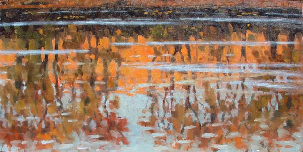 River Late Burn 10x20.JPG
