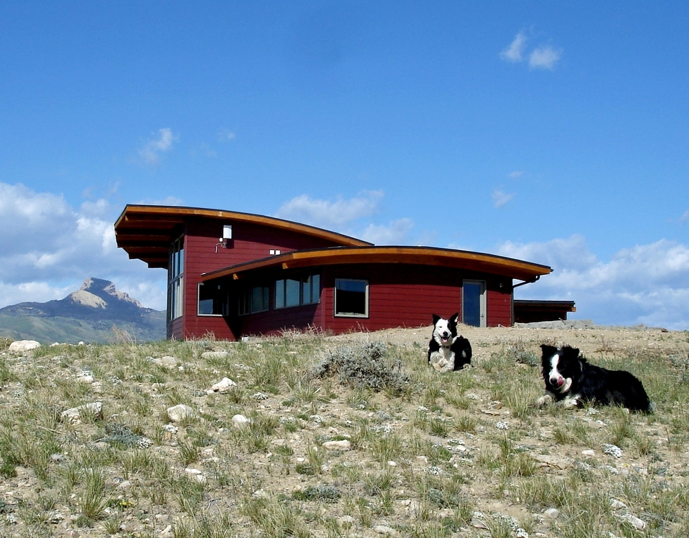 Exterior with Dogs.jpg