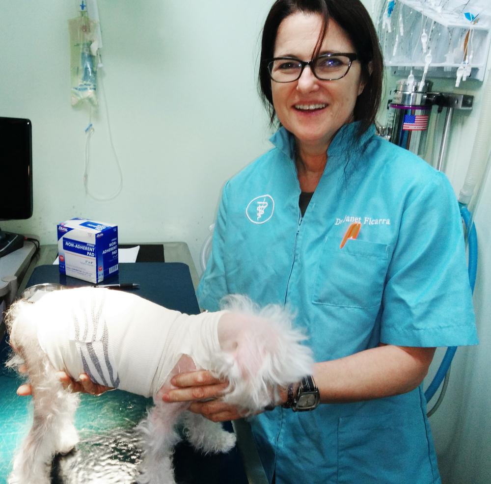 Dr. Janet Ficarra, DVM