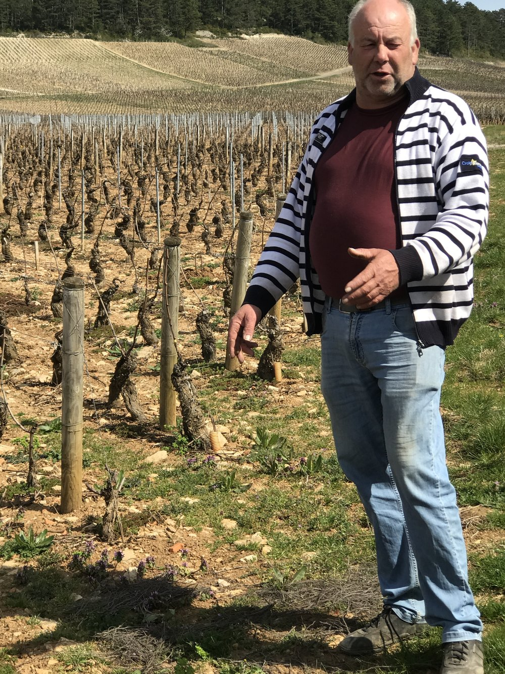 Paul Garaudet at Monthelie talks about the challenges of organic farming, he practices lutte raissonneé and understands the importance of responsible wine making, but will argue the politics of it!  Like anything else there are always many different perspectives.