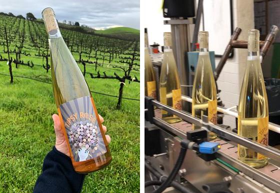 tipsy-wines.jpg