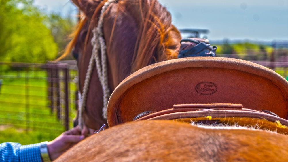 Herreros Cowboy 1.jpg