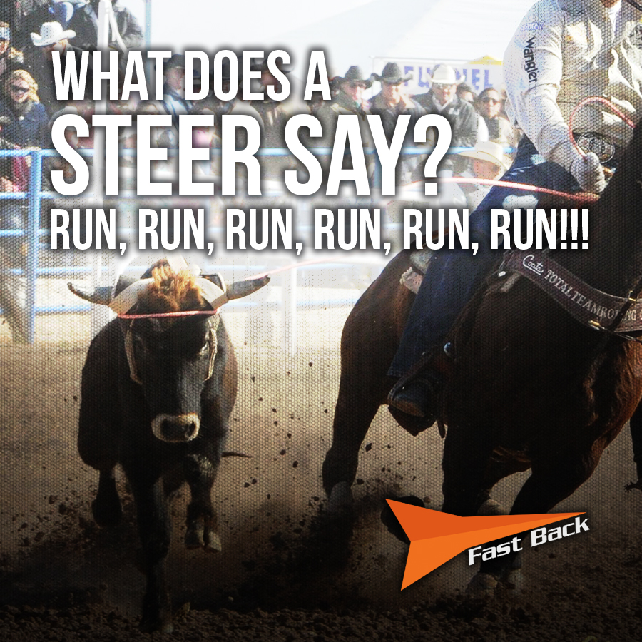 FBR Steer Say.jpg