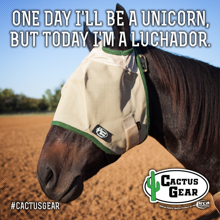 Cactus-Gear-FB-Unicorn.jpg