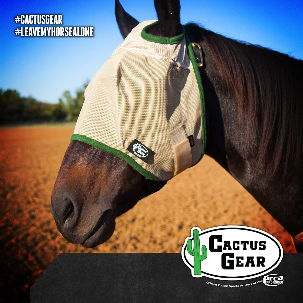CG FB FLY MASK.jpg