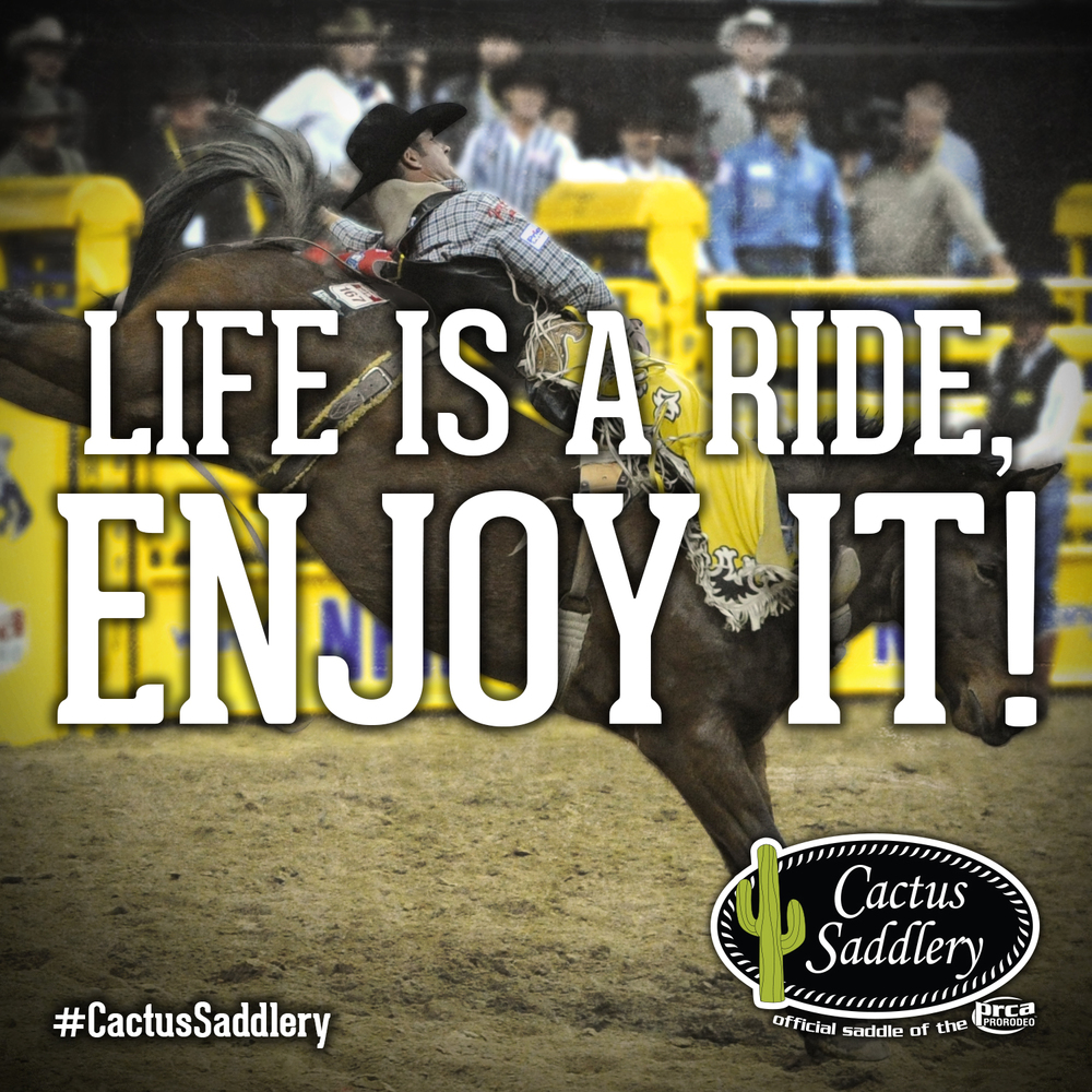 Cactus-Saddlery-FB-EnjoyIt.jpg