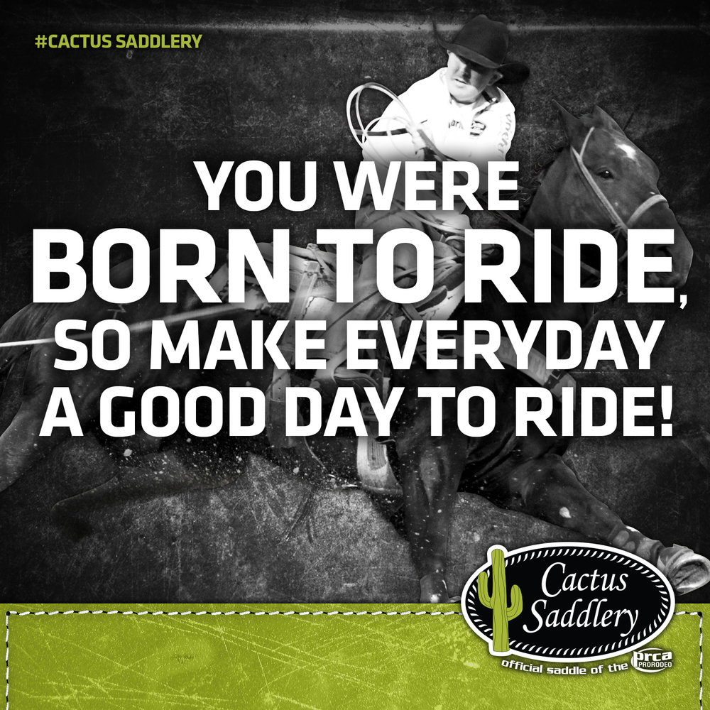 CS FB BORN TO RIDE.jpg