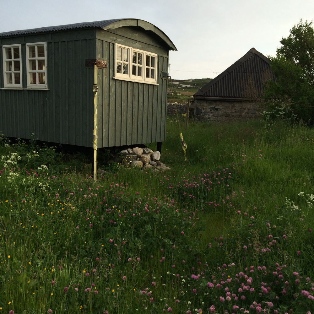 The hut June 2016.