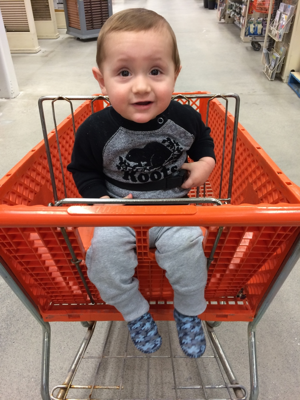 On a visit to Home Depot to buy deck supplies Dominik agreed with my thoughts!