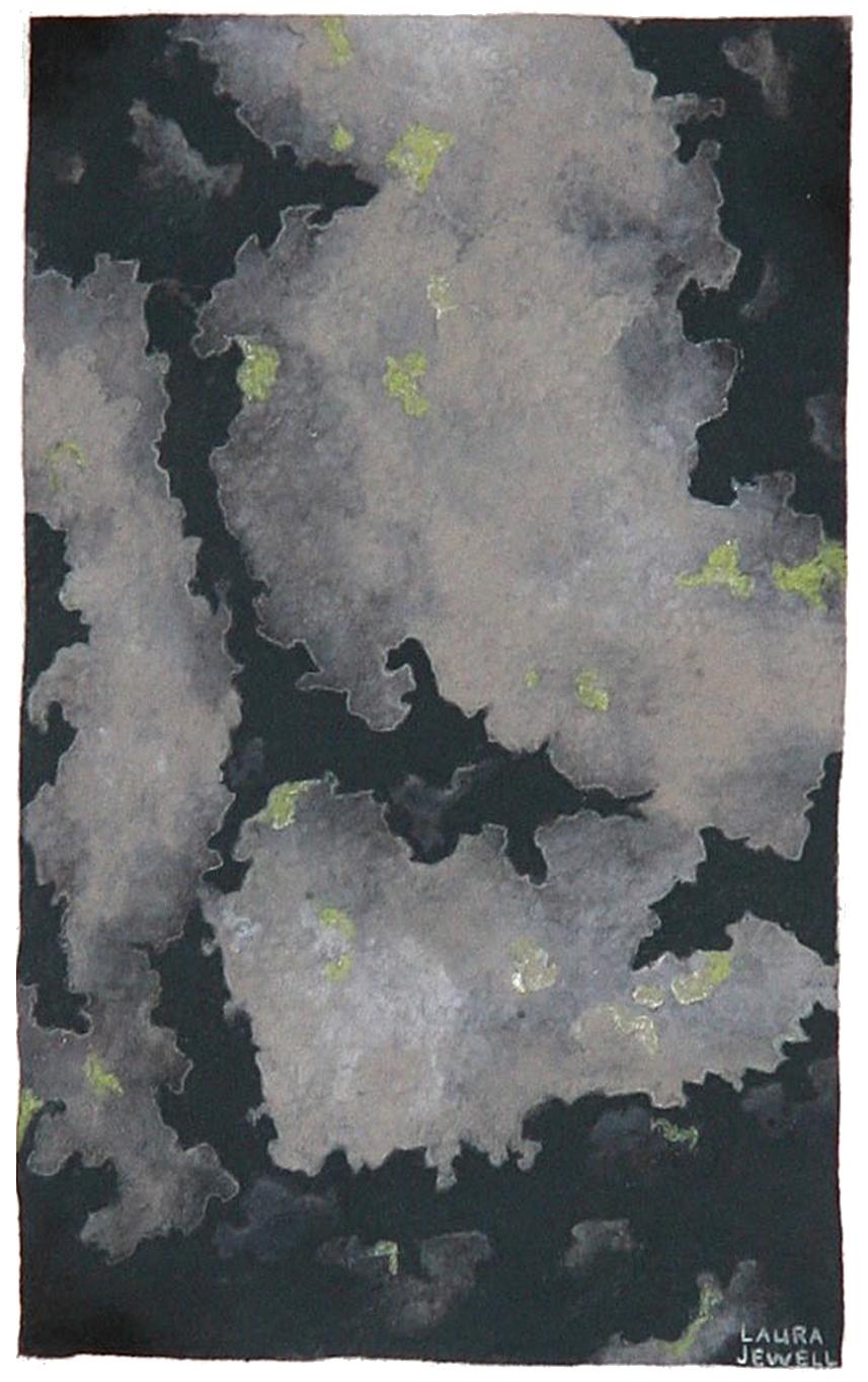 Damp Moss on Stone