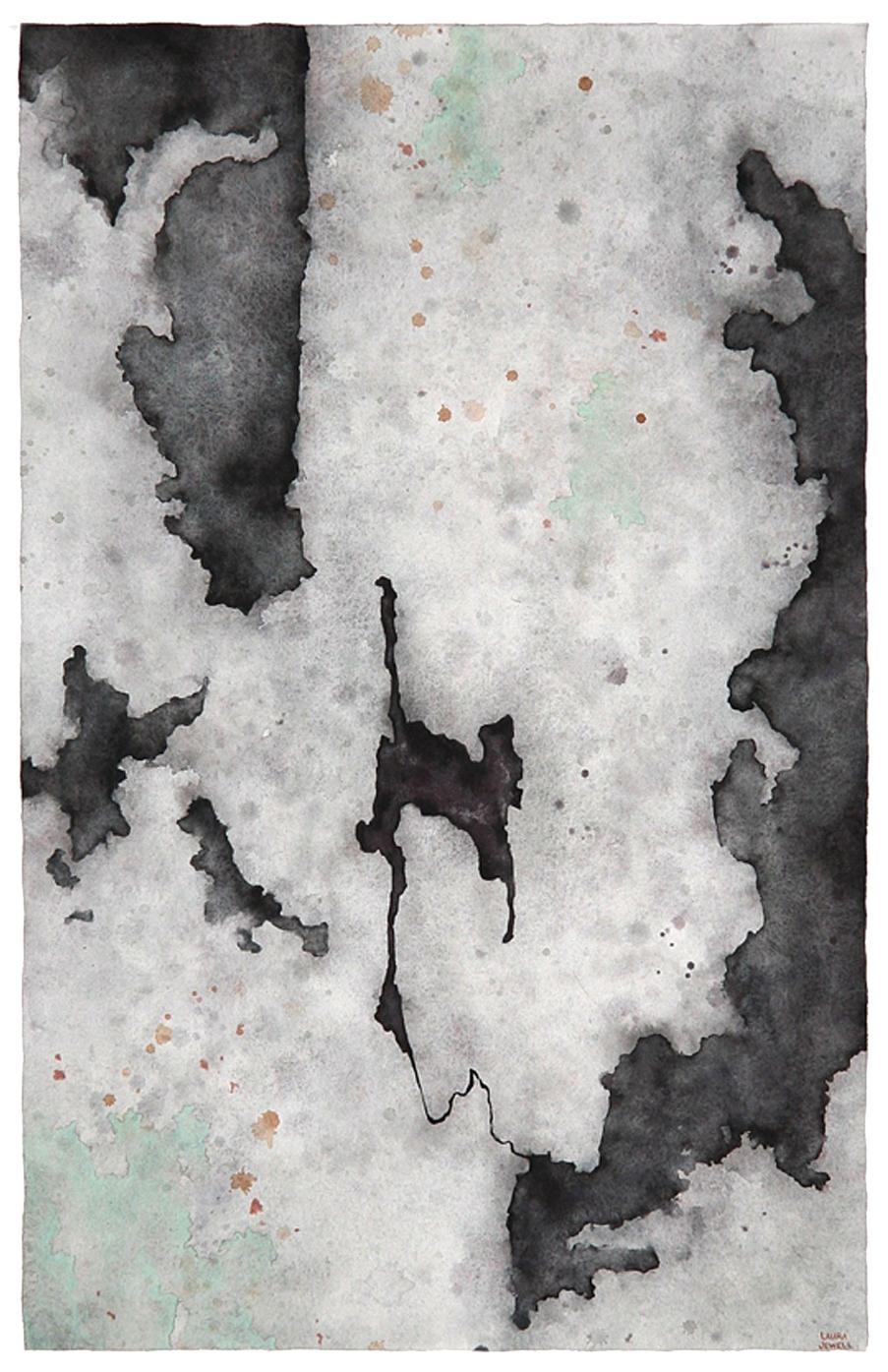 Undisturbed Lichens