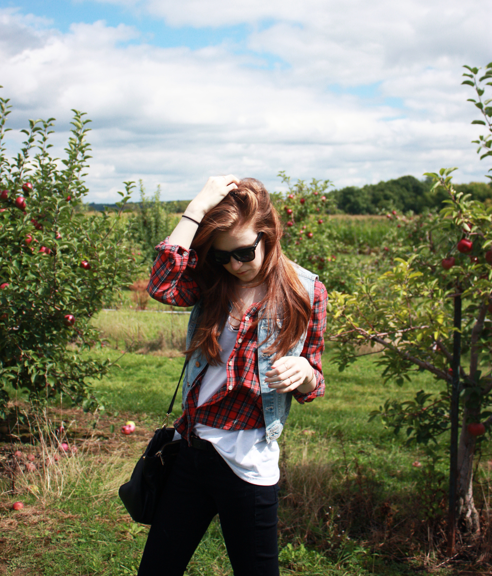Hunt and Harvest Apple Picking Olivia Crandall
