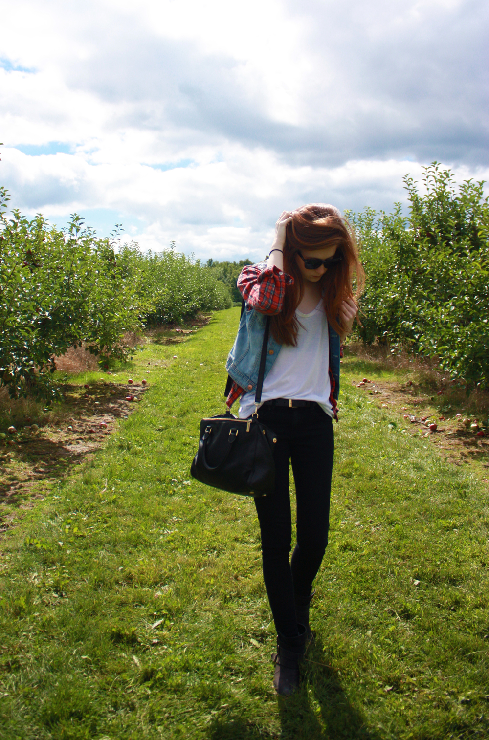 Hunt and Harvest Apple Picking