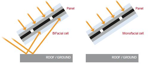 Bifacial solar modules also absorb reflected light energy on the rear side of the cells - Image credit LG energy