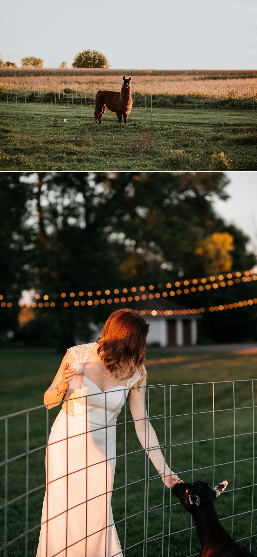 caroline and taylor minneapolis minnesota texas austin dallas houston wedding elopement destination intimate adventurous couple best photographer_0253.jpg