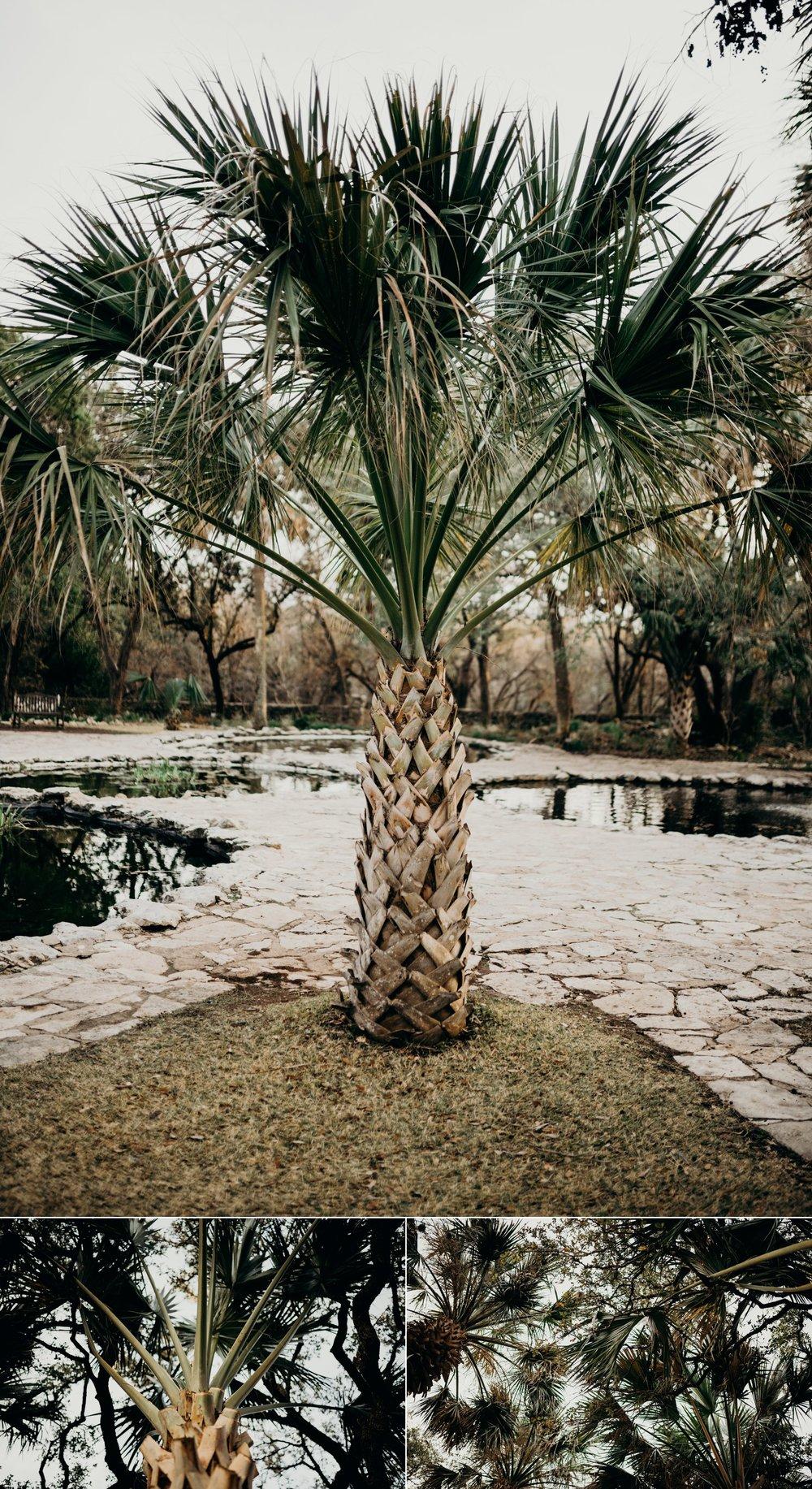 drew-andrew-texas-austin-minnesota-minneapolis-wedding-photographer-destination-elopement-intimate-adventurous_0135.jpg