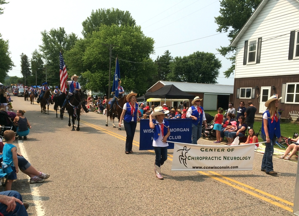 Wisconsin Morgan Horse Club Parade Unit at Witwen, July 4th, 2015