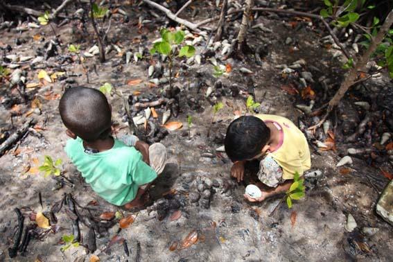 9_kids_in_mangroves