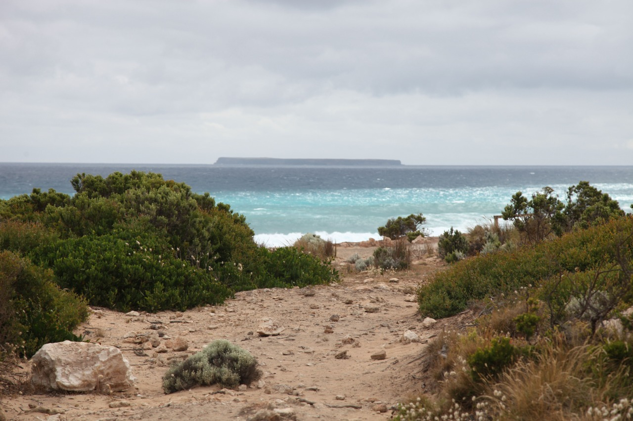 View toDeen Maar Island - Gunditjmara  Sea Country