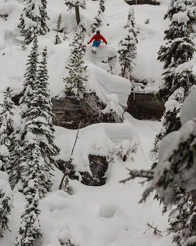 This zone at @revelstokemtn is on of my favourite spots in the world. The last time I was there was 5 or 6 years ago, so it was awesome to return this year! Photo: @cammcdermid @allusinwinterland ————————————————————— @head_ski @headtothekore @scottfreeski @icebreakernz @mypakagenz @yakimaaunz @snowcentrenz @freerideworldtour  @tyroliabindings #noshortcuts #keepsyoubrave #accessallareas #tothekore #kore117