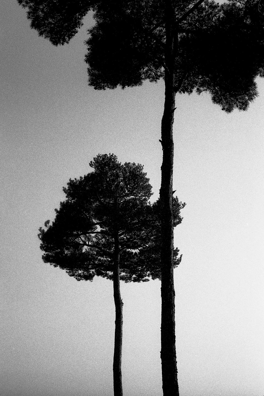 Untitled-21-5.jpg