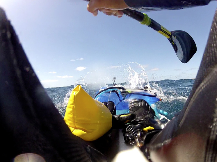Paddling_Bass Strait.jpg
