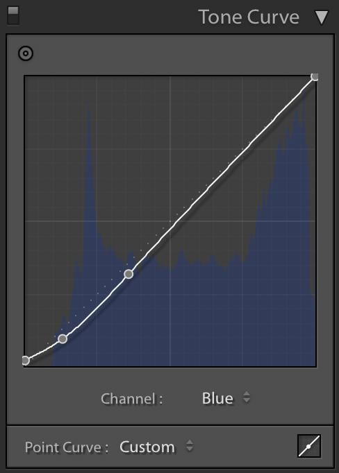5- CURVES - BLUE.png
