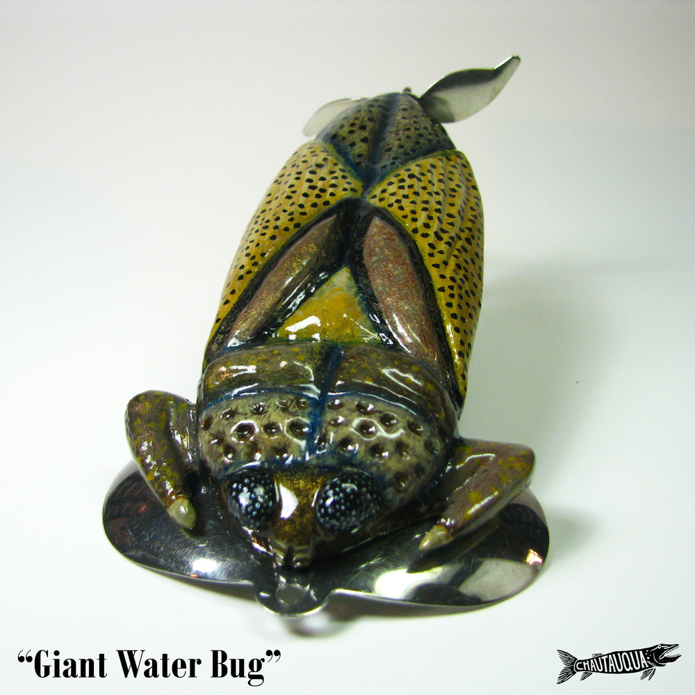 Giant Water Bug1.jpg