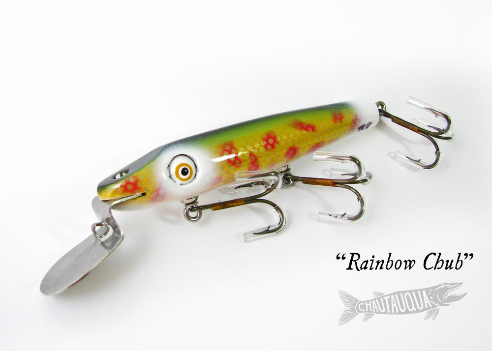 Rainbow Chub_SBPP.jpg