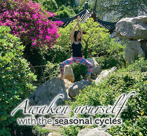 Awaken yourself with the seasonal cycles