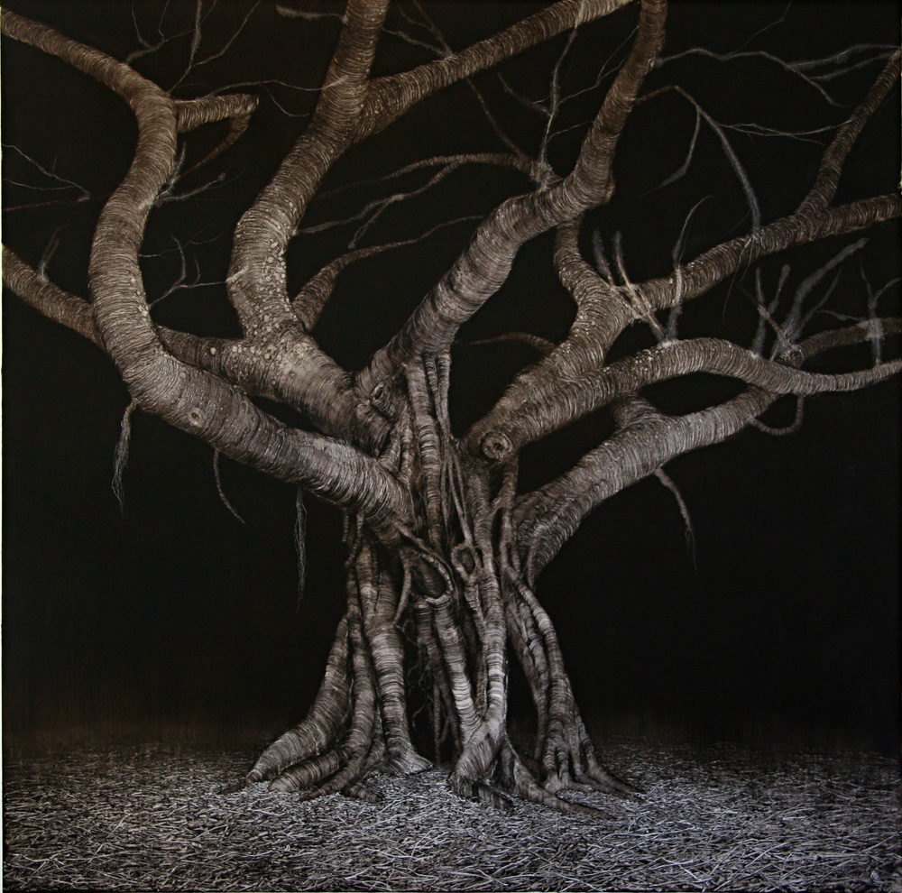 Domain Night Fig, 2006. Oil on paper. 89cm x 89cm.