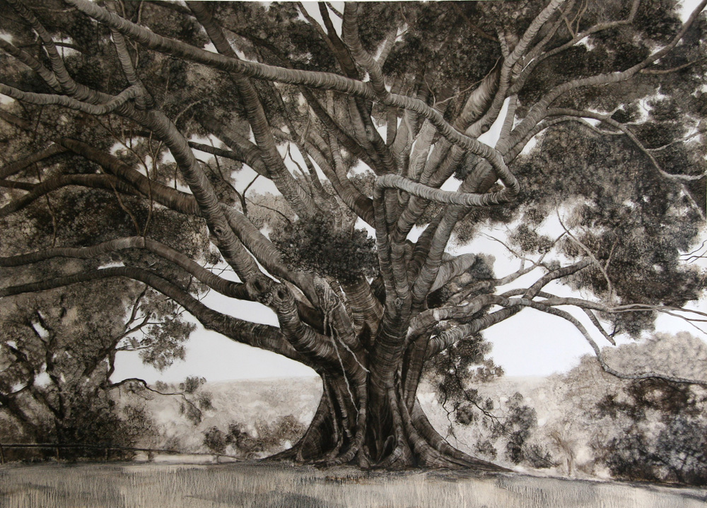 Small Fig, 2006. Oil on paper. 106cm x 141cm.