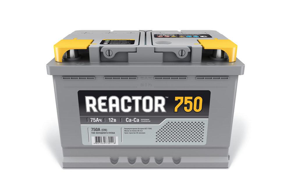 Reactor2-4.jpg